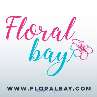 Birthday gifts Same day delivery by Floralbay Boston, USA Classifieds